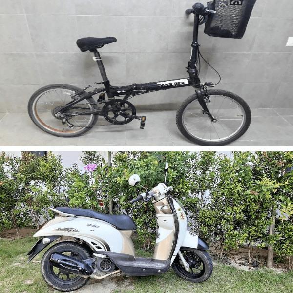 אופניים מול קטנוע של מיכל פולת