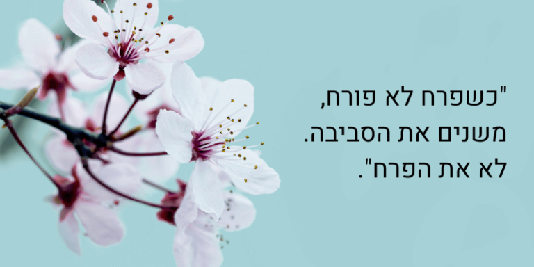 """ציטוט: """"כשפרח לא פורח משנים את הסביבה. לא את הפרח"""" - מטאפורה ללחיות את הייעוד שלך"""
