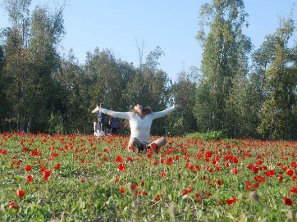 מיכל פולת_שמחה בשדה פרחים