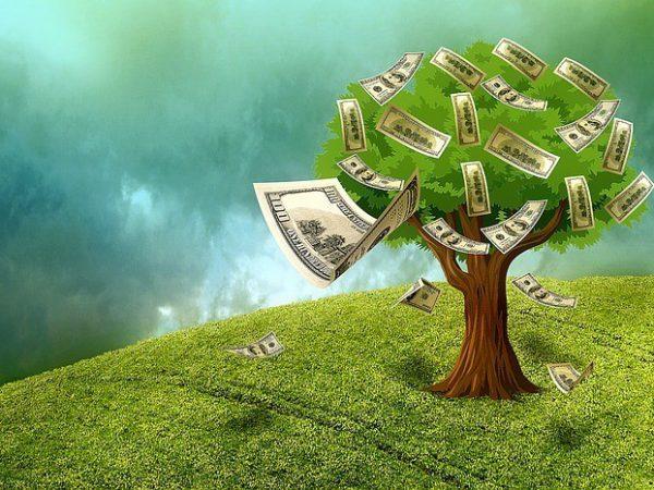 כסף צומח על עץ